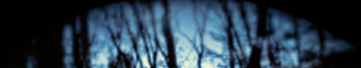 www.daveharnetty.com